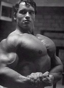 [Image: Arnold-Schwarzenegger-Chest.jpg]