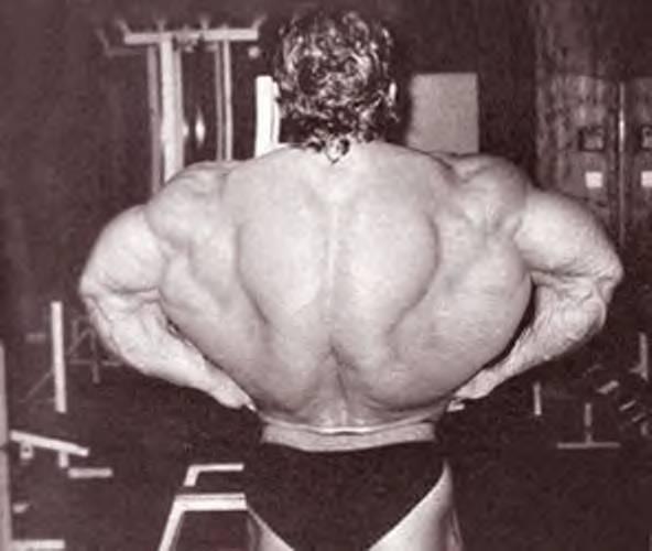 Der Rücken von Dorian Yates
