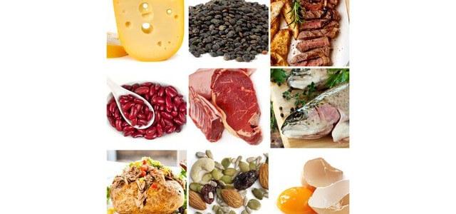 protein übersicht