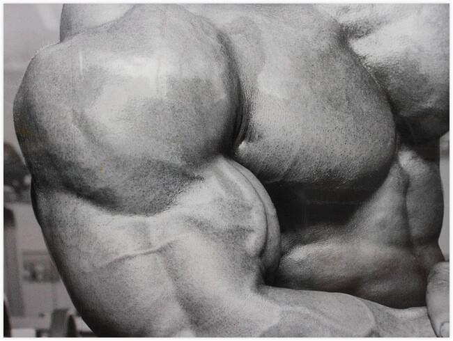 Dünne arme muskelaufbau