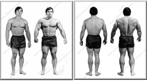 natural steroid body