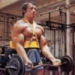 Klasse statt Masse – Was Bodybuilder und Kraftsportler unterscheidet
