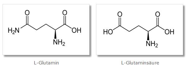 Vergleich - Glutamin & Glutaminsäure