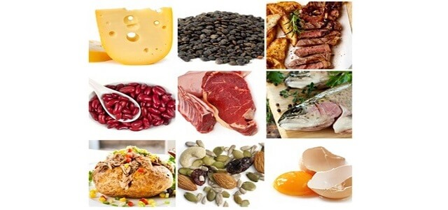 essentielle aminosaeuren in lebensmitteln