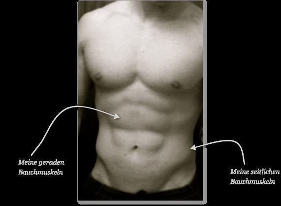Bauchmuskeln von Thomas Bluhm