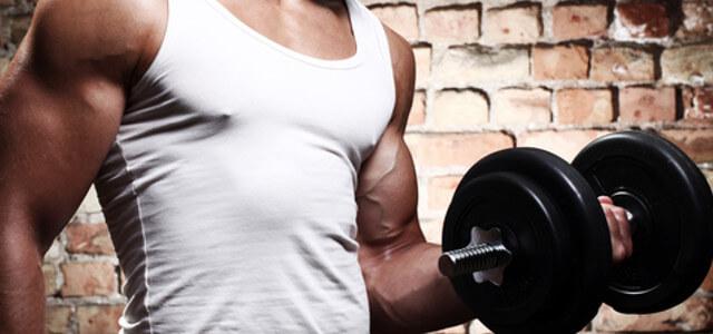 muskelaufbau-ernaehrung-muskelaufbau