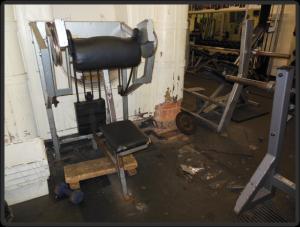 Nauilus Bizepsmaschine