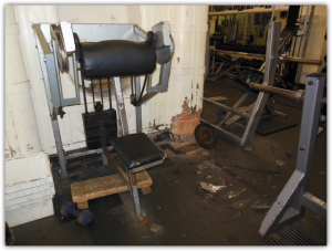 Temple Gym Nautilus Bizeps Maschine