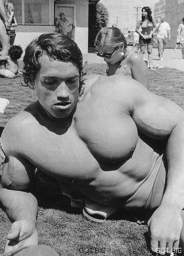 Schwarzenegger beim Sonnen