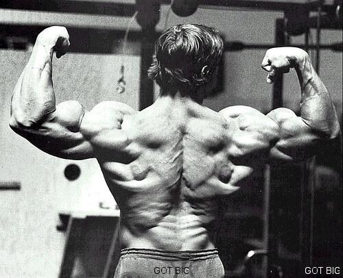 Arnold Schwarzenegger Rückenpose von hinten