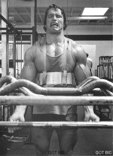 Arnold trainiert Bizeps