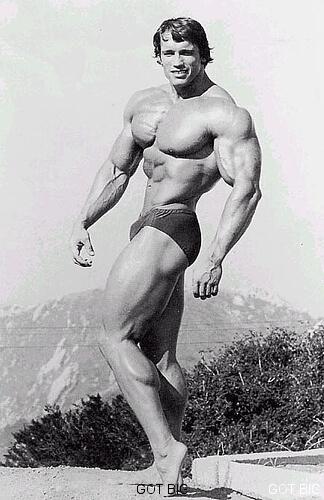 Arnold klassische Pose