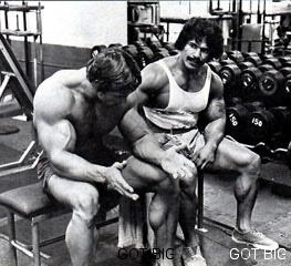 Schwarzenegger über Training