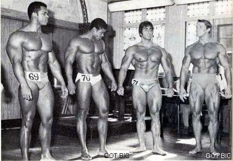 Arnold im Vergleich