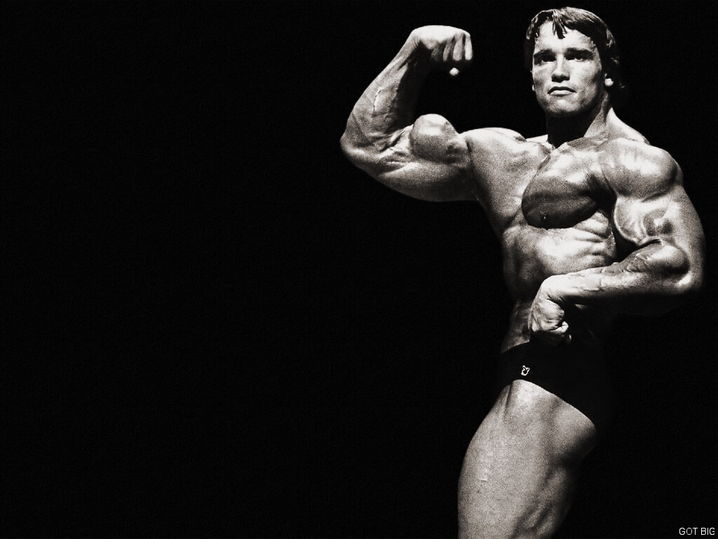 Arnold best Pose