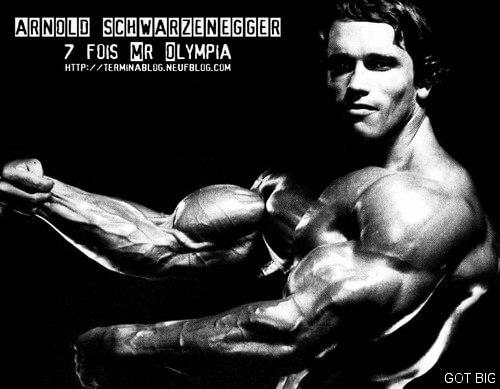 Arnold Schwarzeneggers Bizeps