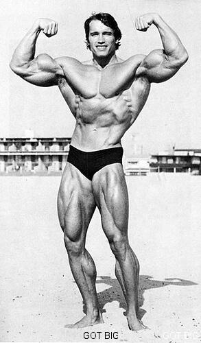 Arnold am Strand