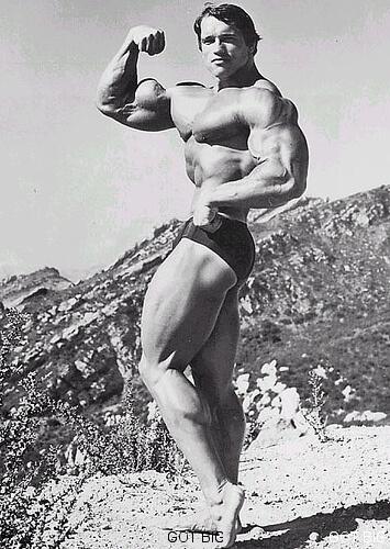 Bizeps Pose von Schwarzenegger