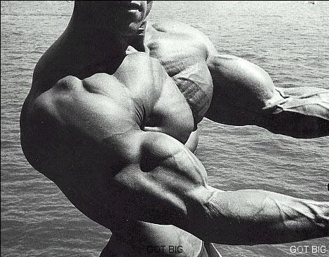 Arnold Schwarzenegger Brustpose von der Seite