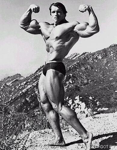 Schwarzenegger in seiner klassischen Pose