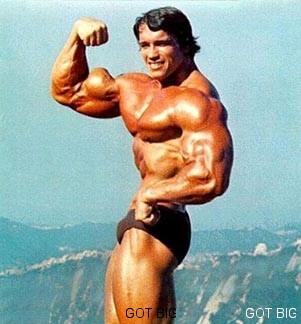 Bizeps Pose von Arnold