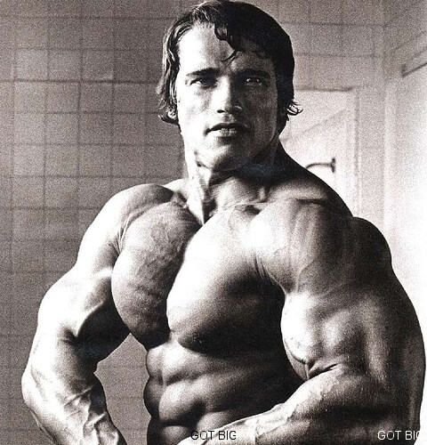Best Pose Arnold