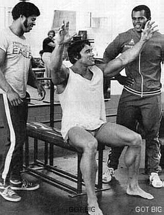 Arnold Schwarzenegger der Champion