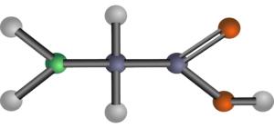 pflanzliche proteinquellen aminosaeuren
